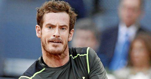 Murray irá a por todas este fin de semana en Gante.