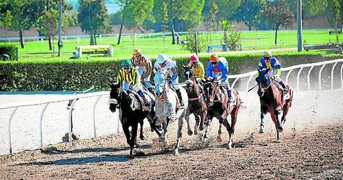 Nueva cita con las carreras de caballos el próximo martes en el Hipódromo de Pineda.