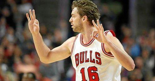 Gasol celebra una canasta con la camiseta de los Bulls.