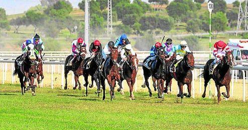 El Gran Hipódromo de Andalucía Javier Piñar Hafner disfrutará este domingo de las cinco pruebas que ponen el punto final al año 2015.