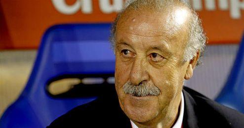 """Del Bosque ve """"difícil"""" volver a ganar la Eurocopa, pero se ven """"animados""""."""