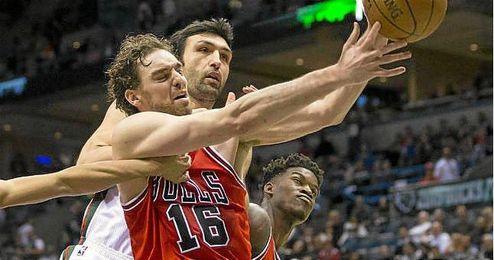 El p�vot espa�ol Pau Gasol, en un partido con los Bulls de Chicago.