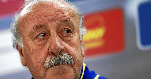 Del Bosque, seleccionador nacional espa�ol.