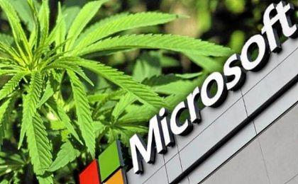 La venta legal de cannabis en Estados Unidos ha aumentado 700 millones en el último año.