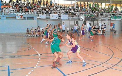 Paso adelante del minibasket femenino