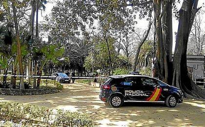 El acusado de la violación mortal del parque insiste en que las relaciones fueron consentidas