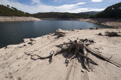 La Confederación Hidrográfica Miño-Sil decreta la alerta por sequía