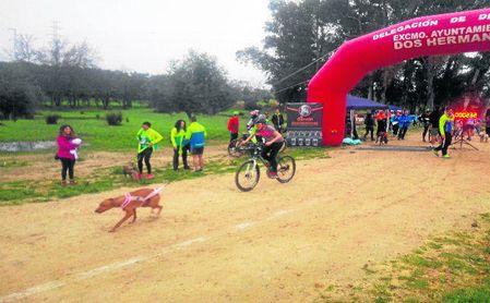 Deporte junto a la mascota