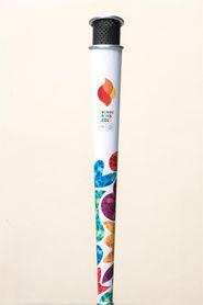 Presentan la antorcha de los Juegos Olímpicos de la Juventud de Buenos Aires 2018