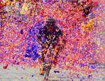 'El Torito' Canastuj se impone al colombiano Tibaquira en la séptima etapa