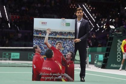 David Ferrer, Premio a la Excelencia de la Copa Davis