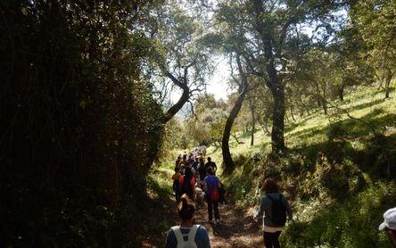 Consejos para realizar alguno de los más de 100 senderos que ofrece la Diputación