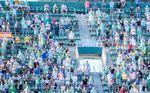 El Betis manda una advertencia a los abonados de Gol Sur